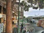 6am Wholesale Produce Market